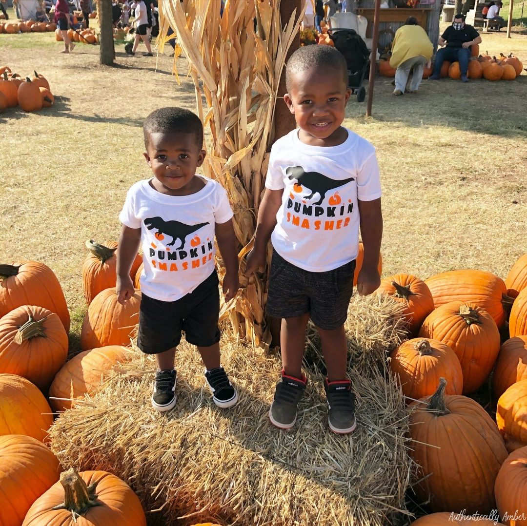 authentically amber fall activity pumpkin patch during covid